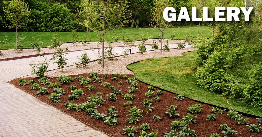 galleryNEW