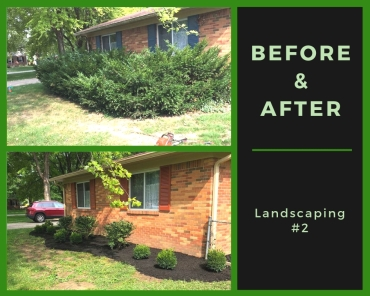 Before & After - Landscaping #2